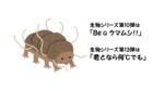 10クマムシ.png